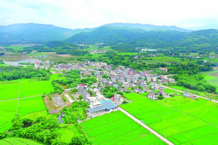 祖塘坐落在希望的田野上。
